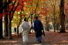 函館市 見晴公園 1